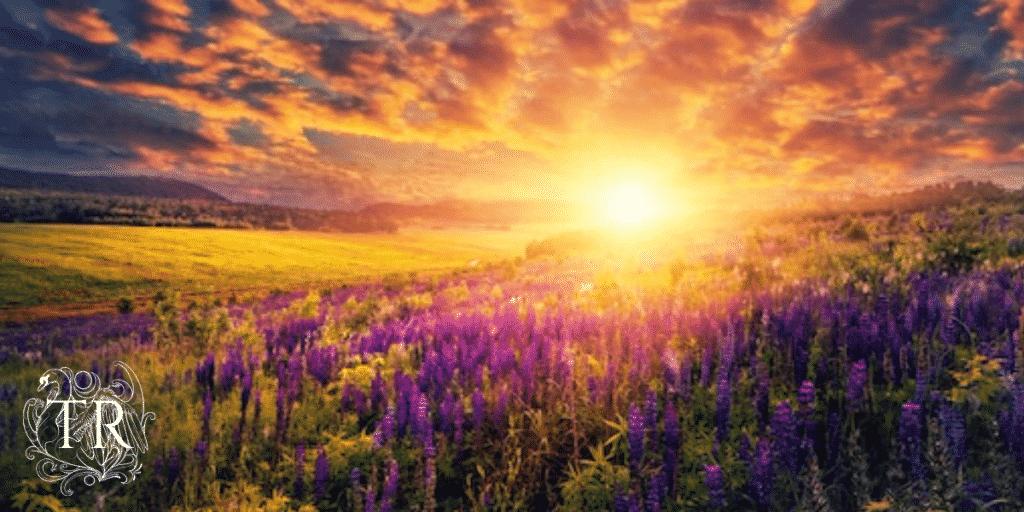 Titans Rising – A Favor For A Friend, Part II